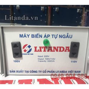 may-bien-ap-tu-ngau-litanda-3000va